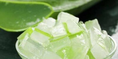 aloe vera ice-cubes for sunburn