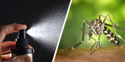 make mosquito insect repellent