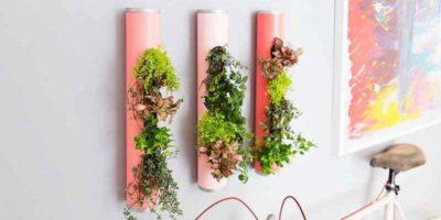 make an indoor garden