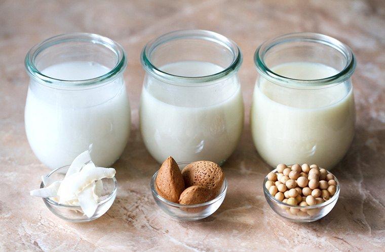 make vegan milk recipes