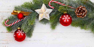 make fir branches durable