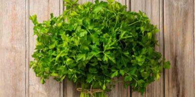 ways to freeze parsley correctly