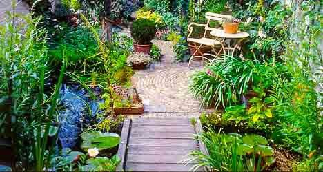 Landscape a garden