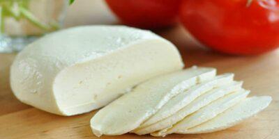easy recipe to make mozzarella