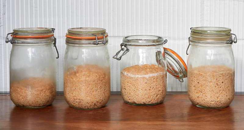 make sourdough for beginners 2 (1)