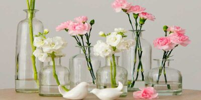 clean glass vases, decanters and bottles