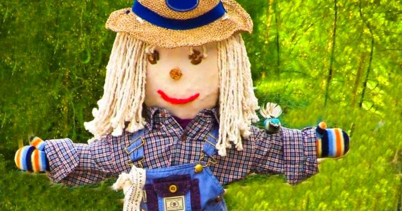 make a scarecrow