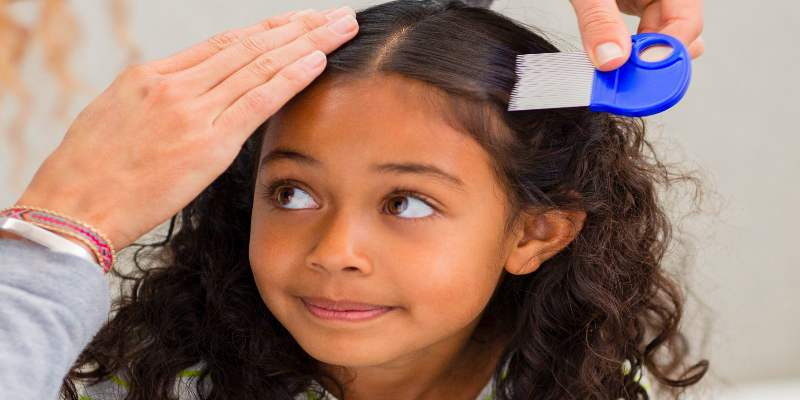 treat head lice with home remedies