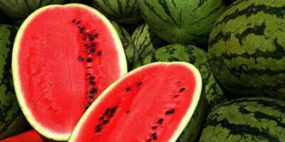 how to choose watermelon (1)
