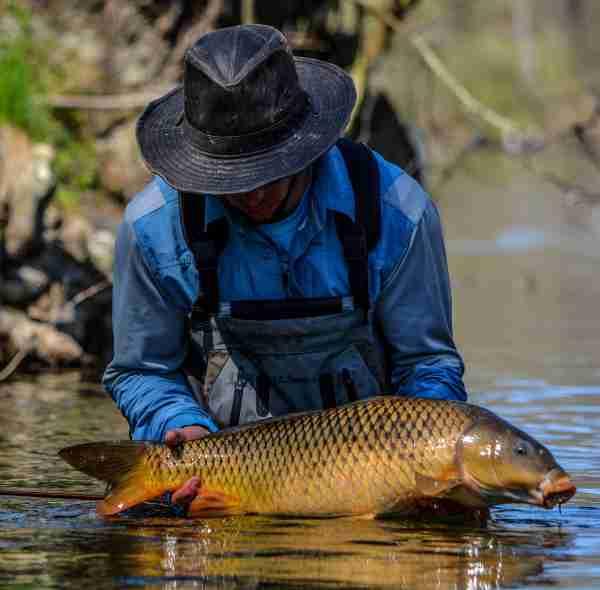 how to catch carp
