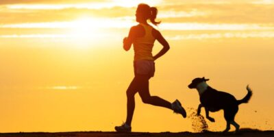 how to keep pets active