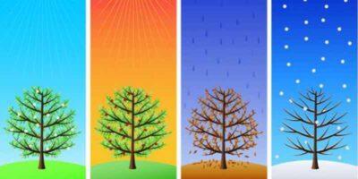 How to use farmers almanac rules for the garden in each season